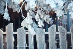 Drewniany ogrodzenie pod mrozem Fotografia Stock