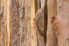 Drewniany ogrodzenie z Gnarl Obraz Royalty Free