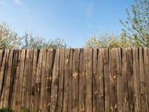 Drewniany ogrodzenie z kwitnąć drzewa Obraz Stock