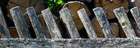 Drewniany ogrodzenie z zielonymi arywista roślinami Obrazy Royalty Free