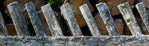 Drewniany ogrodzenie z zielonymi arywista roślinami Obraz Stock