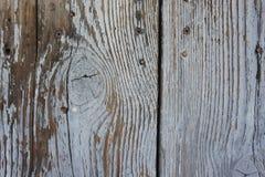 Drewniany oldwood tło, Fotografia Stock