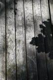 Drewniany Płotowy panel Obraz Royalty Free