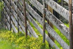 drewniany płotu Fotografia Royalty Free