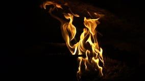 Drewniany piekarnika ogień Gorący Bardzo Dużo zbiory wideo