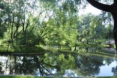 Drewniany plandeki wody lustra spojrzenie Lato gorący greenfield Trawa zdjęcie royalty free