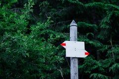 Drewniany pointer na tle zieleni drzewa zdjęcie stock
