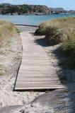 Drewniany posadzkowy prowadzić plaża Zdjęcia Royalty Free