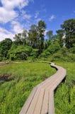 Drewniany przejście Zdjęcie Royalty Free