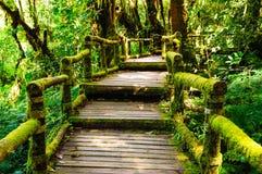Drewniany przejście Fotografia Stock