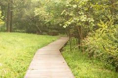 Drewniany przejście w parku Fotografia Royalty Free