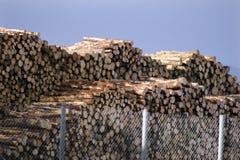 Drewniany przemysł Zdjęcie Royalty Free
