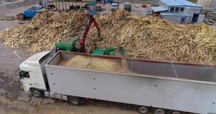 Drewniany przerób dla trociny dla produkcji paliwo brykietuje Wielki stos łupka dla przetwarzać w paliwo zdjęcie wideo