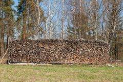 Drewniany przygotowywający dla zimy Ekologiczny drewniany ogrzewanie Pracować w leśnictwie Fotografia Royalty Free