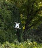 Drewniany ptaka dom w ogródzie Zdjęcia Royalty Free