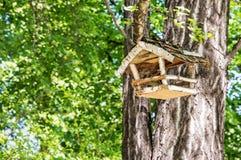 Drewniany ptaka domu obwieszenie na zielonym drzewie, piękno w naturze fotografia stock
