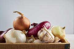 Drewniany pudełko z świeżym czosnkiem i cebulą na białym tle Wciąż życie z surowym warzywem Pojęcie zdrowy jedzenie i odżywianie fotografia stock