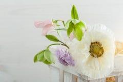 Drewniany pudełko z maczkiem i kwiatami Fotografia Stock