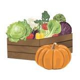 Drewniany pudełko z warzywami Zdjęcia Royalty Free