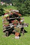 Drewniany rydwan z kwiatów garnkami dekorować ogród Zdjęcie Royalty Free