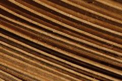 Drewniany rytm Fotografia Stock