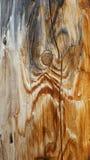 Drewniany słup Zdjęcie Royalty Free