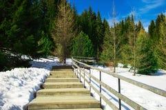 Drewniany schody Zdjęcia Stock