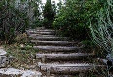 Drewniany schody Obrazy Royalty Free