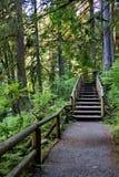 Drewniany schody na zwyczajnym śladzie Zdjęcia Royalty Free