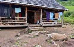 Drewniany sheepfold zdjęcia stock
