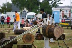 Drewniany siekacz. Fotografia Stock