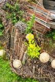 Drewniany skład z roślinami Zdjęcie Stock