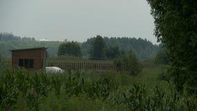 Drewniany stajnia krajobrazu widok zdjęcie wideo