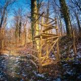 Drewniany stary wysoki siedzenie w lesie Zdjęcie Royalty Free
