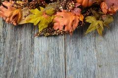 Drewniany tło dla dziękczynienia Obrazy Stock