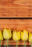 Drewniany tło z żółtymi tulipanami w rzędzie Obrazy Stock