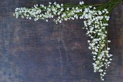 Drewniany tło z białymi kwiatami Fotografia Royalty Free