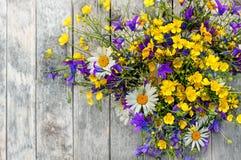 Drewniany tło z bukietem małe dzikich kwiatów stokrotki, dzwony Obrazy Stock