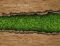 Drewniany tło z cieniami i trawą Obraz Royalty Free