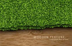 Drewniany tło z cieniami i trawą Zdjęcia Stock