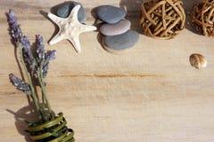 Drewniany tło z morze kamieniami, rozgwiazda i kopiuje przestrzeń dla twój lato fotografii lub teksta Fotografia Royalty Free
