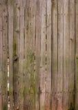 drewniany tła Zdjęcia Stock