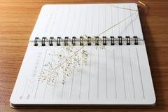 Nutowej książki papier Obraz Stock