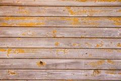 Drewniany tło Drewniany tło z kopii przestrzeni orandge kolorem Zdjęcie Stock