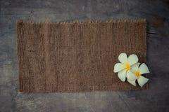 Drewniany tło z Plumeria Zdjęcia Royalty Free