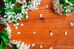 Drewniany tło z wiosna kwiatami Obrazy Royalty Free