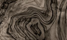 Drewniany tekstura wektoru t?o t?a naturalny tekstury drewno ilustracji