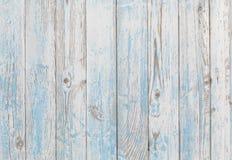 Drewniany tekstury tła błękit i biel obraz stock