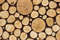 Drewniany tekstury tło wiele bele które ciący od dużego i małego drzewa Obraz Stock