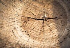 Drewniany tekstury tło, Drewniana tekstura/ Zdjęcie Royalty Free